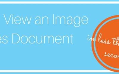 View an Image Services Document in Less than 120 Seconds