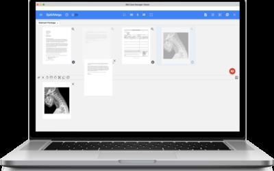 Split and Merge for IBM Content Navigator