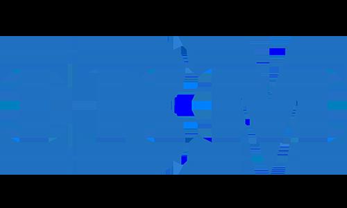 IBM ECM Partner